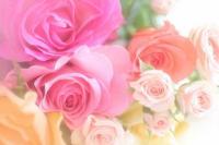 °˖✧4th anniversary特別メニュー✧˖°