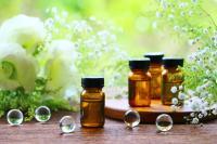 秋のクーポン
