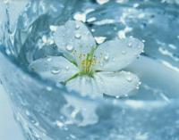 水素吸入+天然麦飯石岩盤温浴メニュー